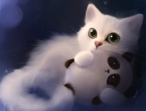 Cute cats and Kittens doing funny things..