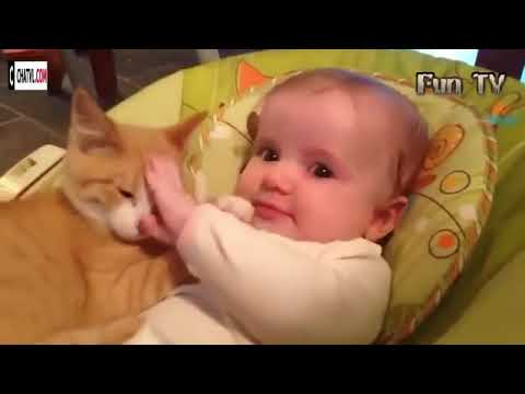 Cute Cats and Dogs and Babies Compilation