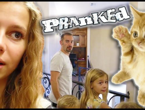 PRANKED My Parents With CUTE BABY KITTEN!
